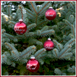 Red Sparkle Peace & Noel Ornament Balls - Set of 4