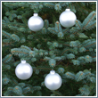 Silver Pearl Glass Ornament Balls - Set of 4